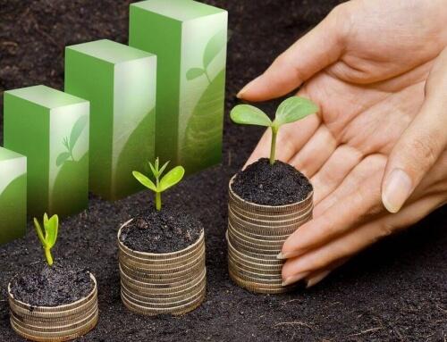 Joustavia lainoja pienyrityksille: iZettle Advance